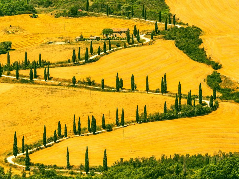 Siena Landscape Tuscany